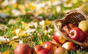 foto-van-appels-en-herfstbladeren-op-de-grond-hd-herfst-wallpaper-1