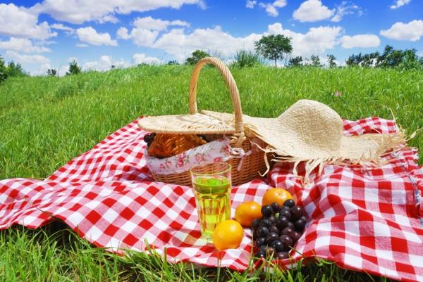 picknick (1)
