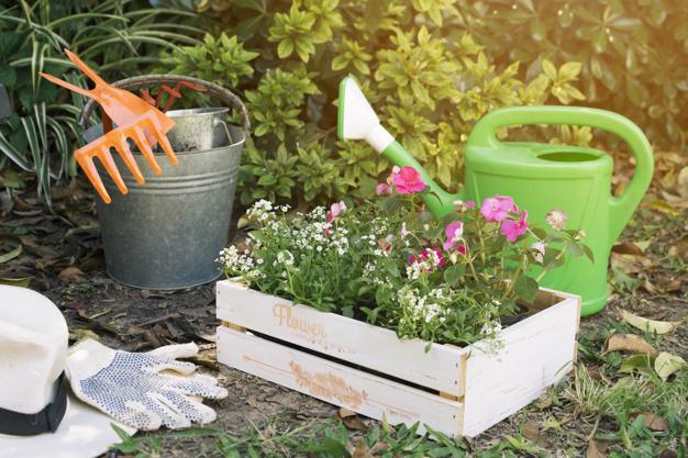 box-flowers-green-garden_23-2148029010